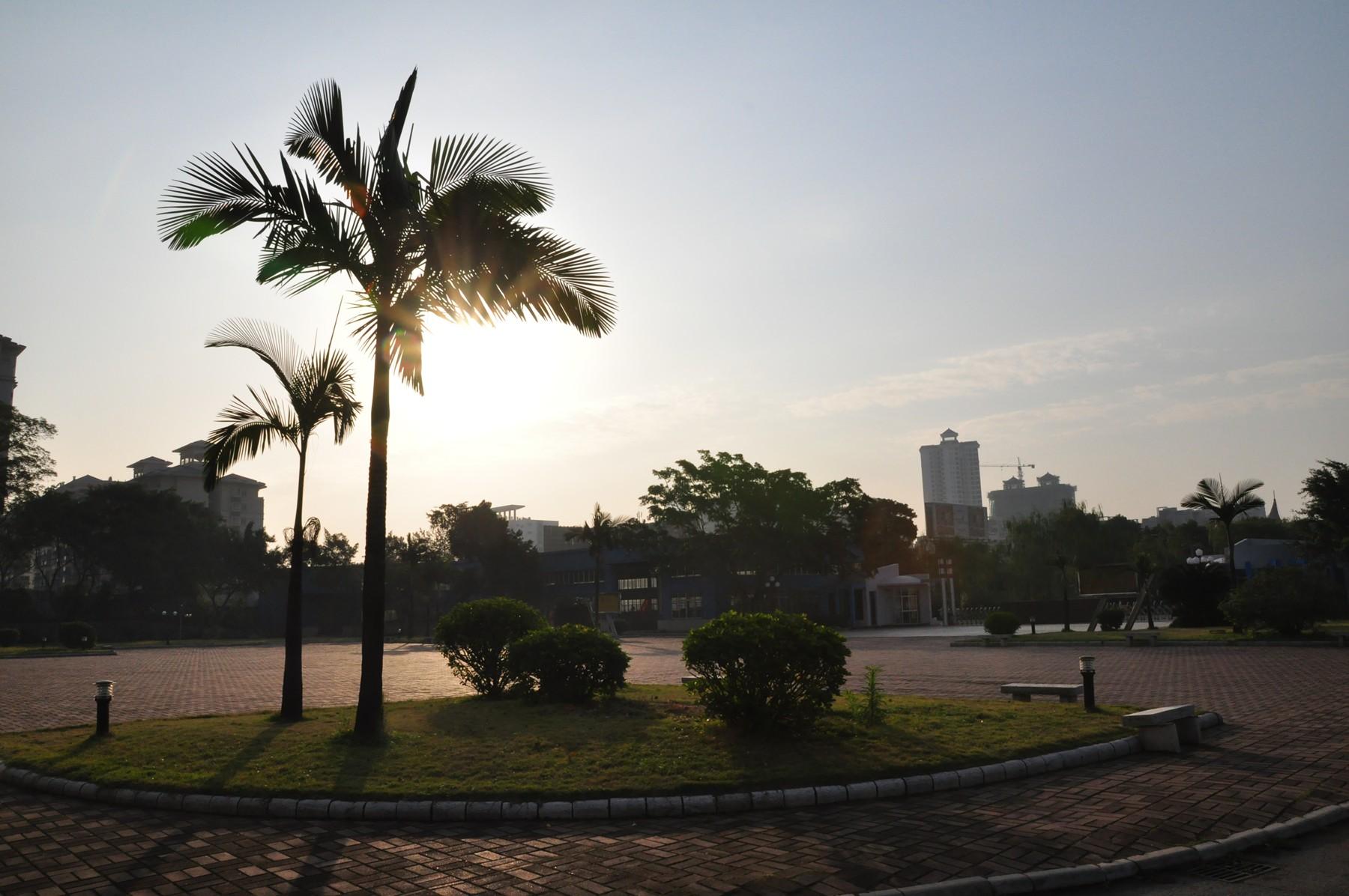 朝阳下的小广场